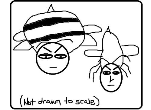 Bumblebee10