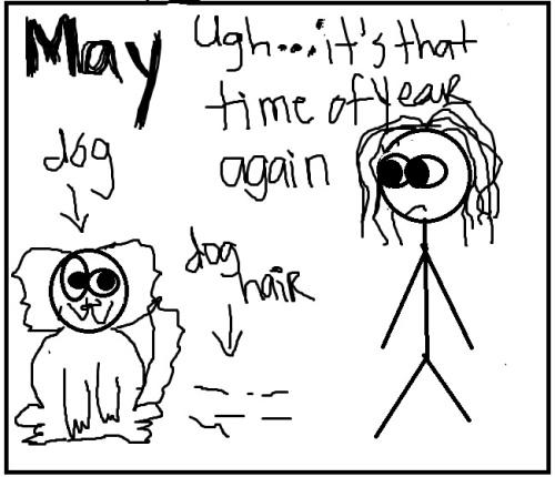 doghair1